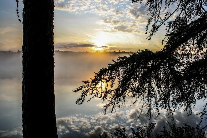 Sunrise through the trees - Bear Head Lake State Park, Minnesota