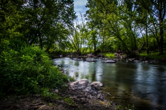 River through the woods - Straight River, Owatonna, Minnesota