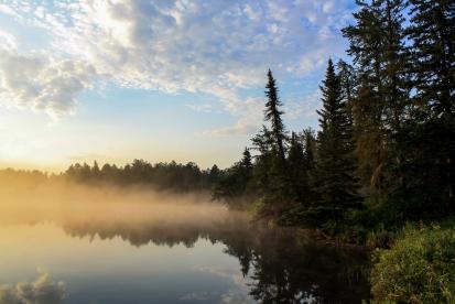 Morning Mist - Bear Head Lake State Park, Minnesota