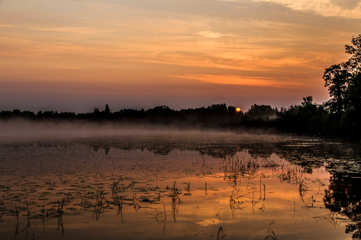 Sunrise through the trees - Dora Lake, Chippewa National Forest, Minnesota