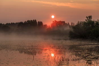 Misty Sunrise - Dora Lake, Chippewa National Forest, Minnesota