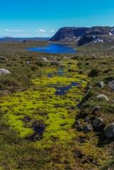 Jotuneheimen Plateau Lake - Jotuneheimen Mountains, Norway