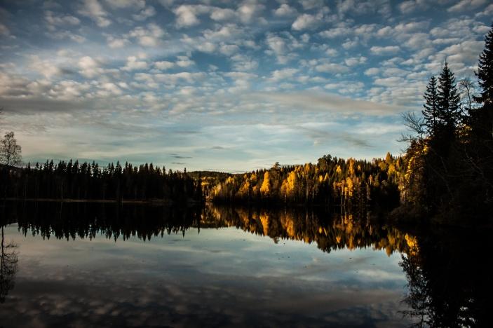 Autumn in Norway - Nordmarka, Norway