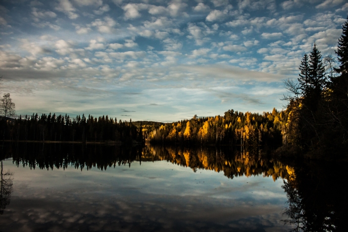 Autumn in Norway - Nordmarka, Norway