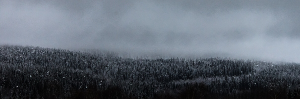 Winter Fog - Kringsjå, Norway