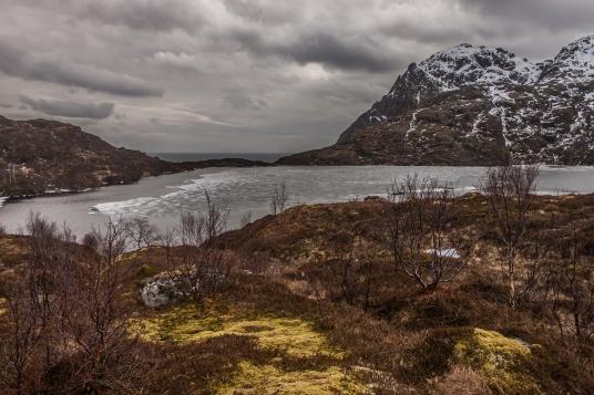 Overlooking the Lake - Lofoten, Norway