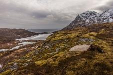 Overlooking the sea - Lofoten, Norway