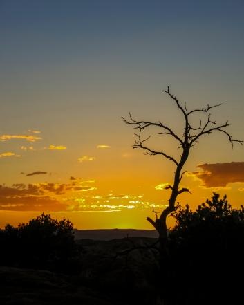 Desert Sunset - Arches National Park, Utah