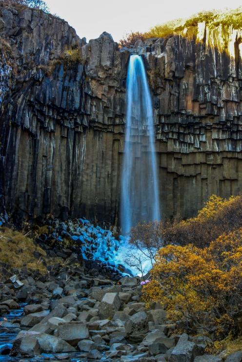 Frozen Svartifoss - Svartifoss, Iceland
