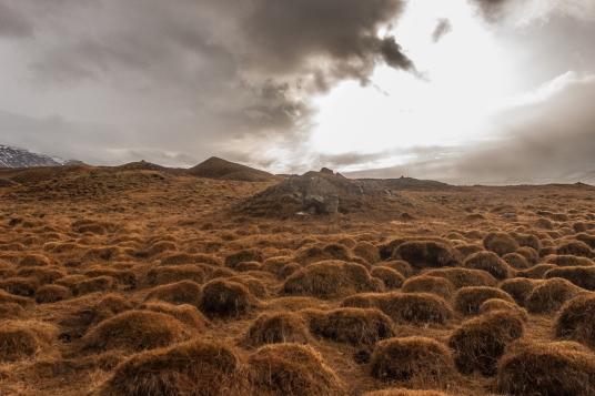 Hillocks - Iceland