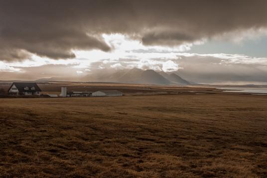 Icelandic Farmstead - Þingeyrar, Iceland
