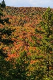 Lutsen Forest View - Lutsen, MN