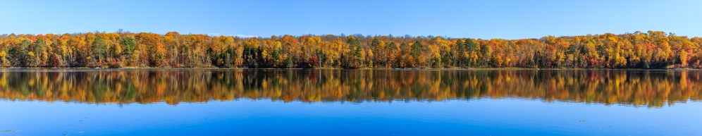 Rorschach woods in autumn color - Trestle Lake, MN