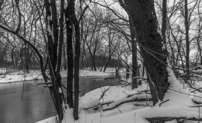 Snowy river through the trees - Straight River, Owatonna, Minnesota