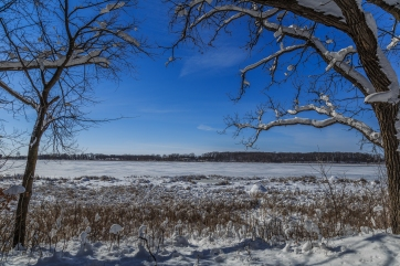 Rice Lake State Park - Winter