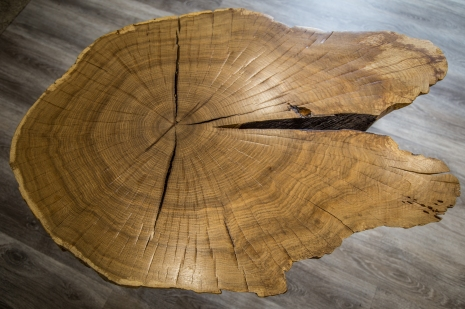 Oak Slab Coffee Table