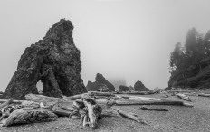 Ruby Beach - Washington State