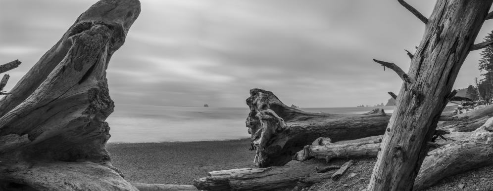Rialto Beach - Olympic National Park