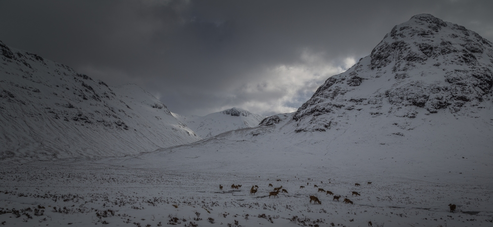 Mountain Passes to Glencoe - Scotland