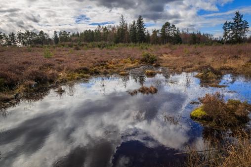 Mirrored Sky - Culloden Battlefield, Inverness, Scotland