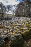 Clava Cairns - Near Culloden Battlefield, Inverness, Scotland
