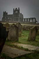 Cemetery of the Ruins of Whitby - Whitby Abbey, Whitby, England