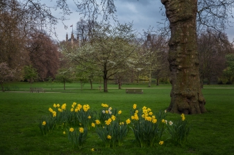 Buckingham Palace Grounds - London, England