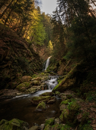 Black Forest - Schwarzwald, Germany