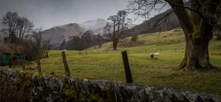 Farms beneath the Mountains - Cumbria, England