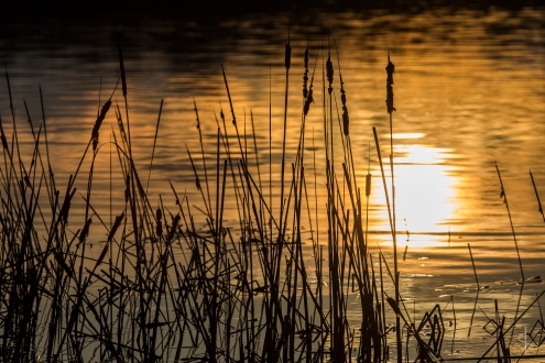 Sunset on Dora Lake - Minnesota
