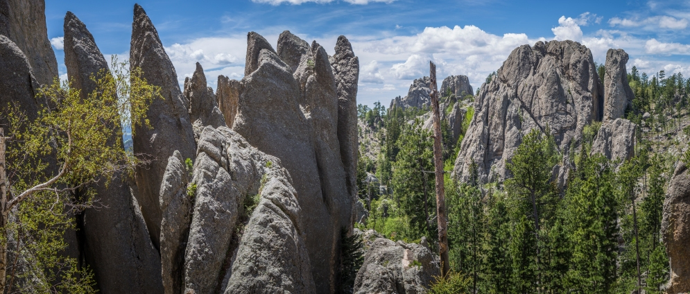 Needles Highway, Black Hills - South Dakota
